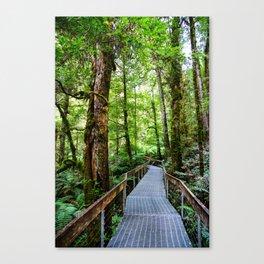 Rainforest Gallery, Warburton, Victoria Canvas Print