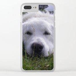 Chien de berger Clear iPhone Case