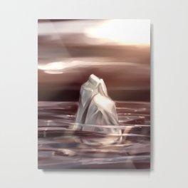 Rock in the water Metal Print