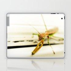 Praying Mantis Laptop & iPad Skin