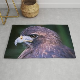 Red-tailed Hawk Rug