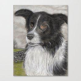 The Sheepdog Canvas Print
