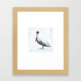 Pelican Framed Art Print