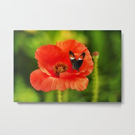 Color Coordinated Metal Print