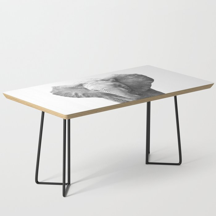 Black and White Baby Elephant Coffee Table