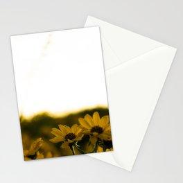 No. 6 Okanagan Sunflowers at Dawn Stationery Cards