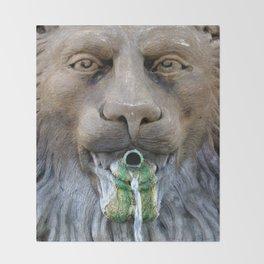 Lion Fountain Throw Blanket