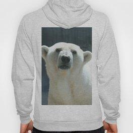 Awesome Polar Baer Hoody