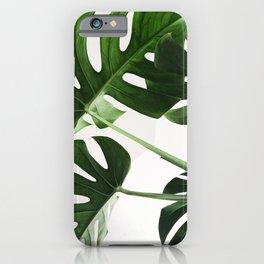 CloseUp Monstera iPhone Case