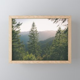Forest XV Framed Mini Art Print