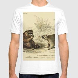Naturalist Raccoons T-shirt