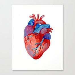 the human heart Canvas Print