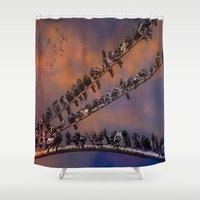 pigeon Shower Curtains featuring Pigeon Gangs by Chris Lord