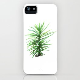 Small tree iPhone Case