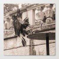 eagle Canvas Prints featuring Eagle by Sébastien BOUVIER