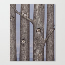 owls in trees Canvas Print