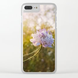 Knautia arvensis Clear iPhone Case
