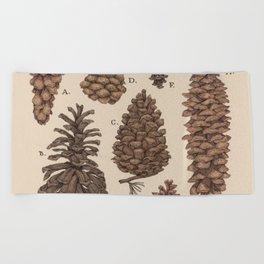 Pinecones Beach Towel