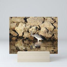 Heron Chasing Fish Mini Art Print
