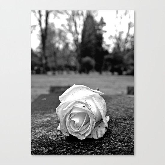 One last rose Canvas Print