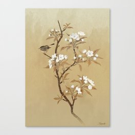 White Pear Blossoms And Sparrow Canvas Print
