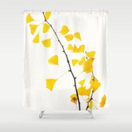 gingko biloba branch Shower Curtain
