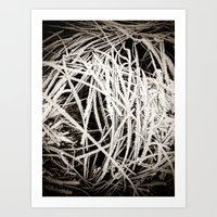 Winter#2 Art Print