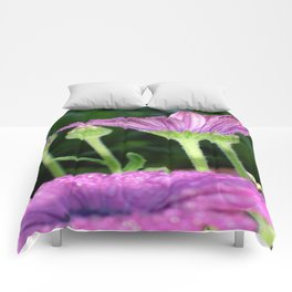 Purple And Pink Daisy Flower in Full Bloom Comforters