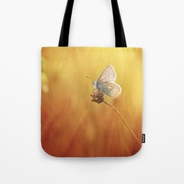 Catching a little sunshine... Tote Bag