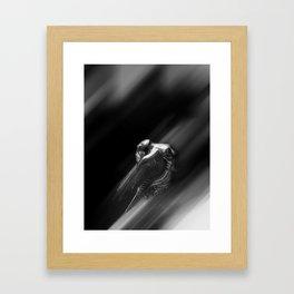 Reach for the Star 2 Framed Art Print