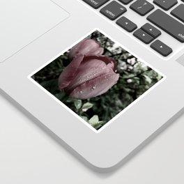 moody tulip Sticker