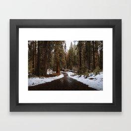 Tunnel Log Road in Sequoia Framed Art Print