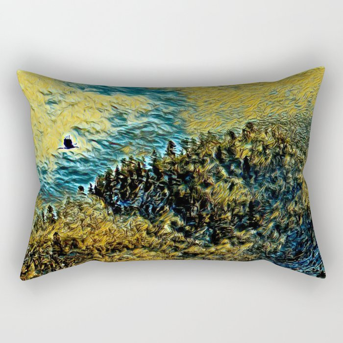 Observation Rectangular Pillow