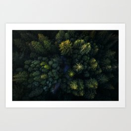 Hidden road Art Print
