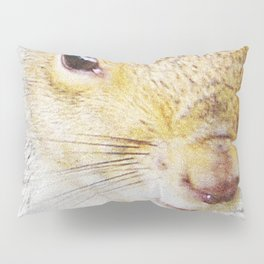 The many faces of Squirrel 5 Pillow Sham