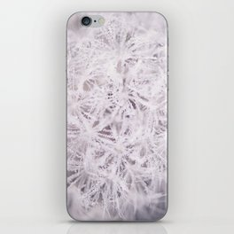Dew on a Dandelion iPhone Skin