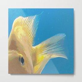 Yellow Fish on Blue Metal Print
