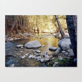 Azusa Canyon Canvas Print