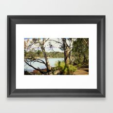 Australian Native Flora Framed Art Print