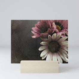 gazania flowers Mini Art Print