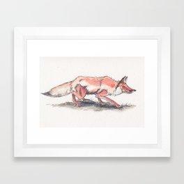Stalking Fox Framed Art Print