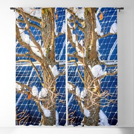 Four Seasons Photosynthesis - Winter. Oak Tree, Snow, And A Solar Power Panel Blackout Curtain