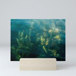 Fresh water seeweed, algae in lake Iseo, Italy Mini Art Print