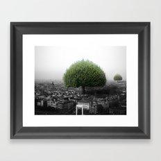 RealNature Framed Art Print