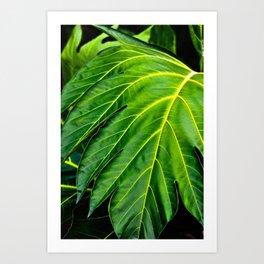 Amazonian Green Art Print