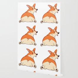 Cute Corgi Wallpaper
