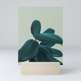 Ficus Elastica #8 #GreenLily #decor #art #society6 Mini Art Print