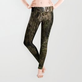 Rainforest Adventure Leggings
