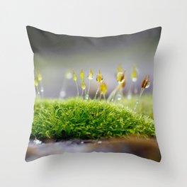 Mossy Moss Throw Pillow
