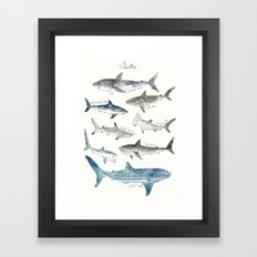 Sharks Framed Art Print